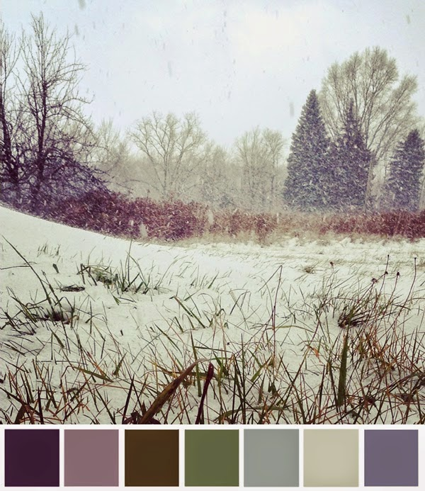http://1.bp.blogspot.com/-H0iA9LJJHuM/VJL-5mPORGI/AAAAAAAARlQ/n9XPD2KqogU/s1600/winterpalette.jpg