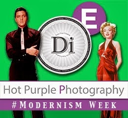 Hot Purple Photography