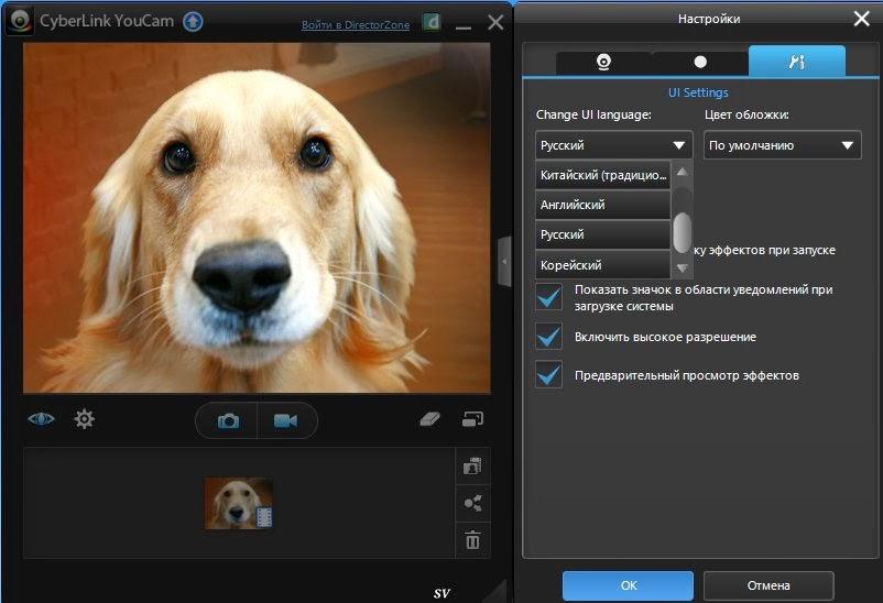 как выяснить что работает интернет камера через media player classic crfxfnm ghjuhfve