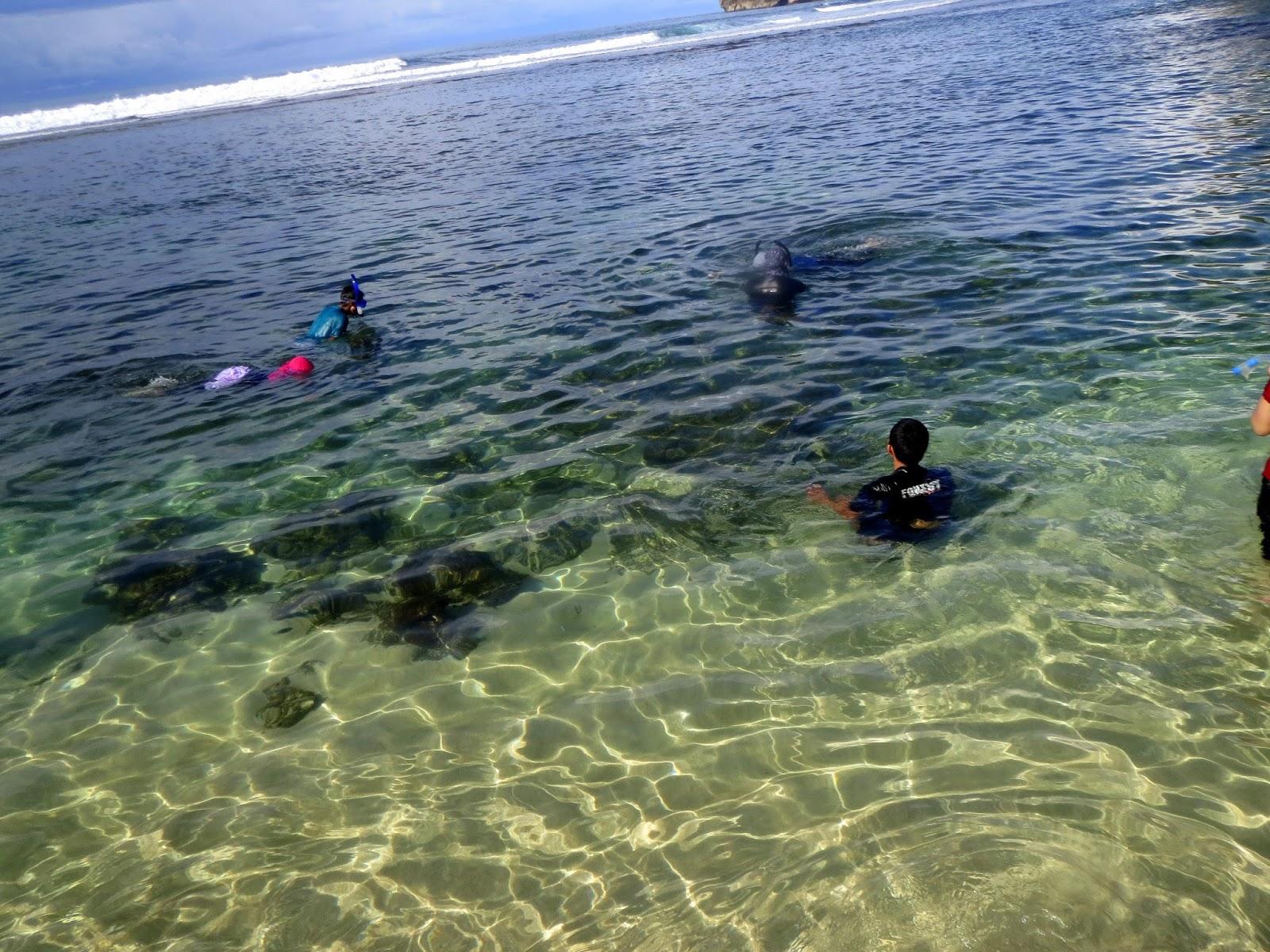 Hasil gambar untuk snorkeling di pantai sadranan jogja