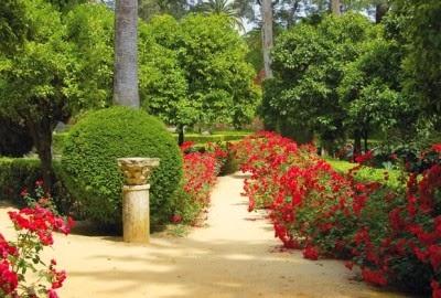 En mi bosque m gico jardines - Jardines de ensueno ...
