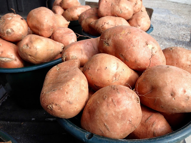Louisiana Yams at a Roadside Stand-Liberty, Texas