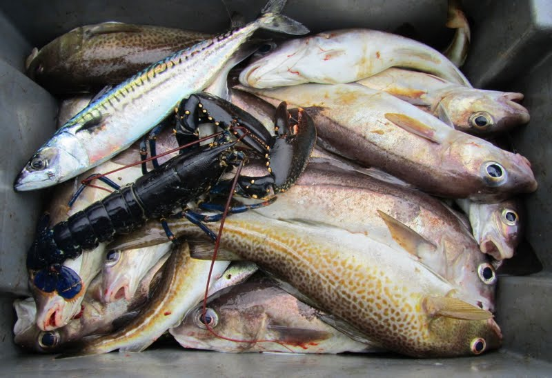 Fair Isle: Fishing with Stewart