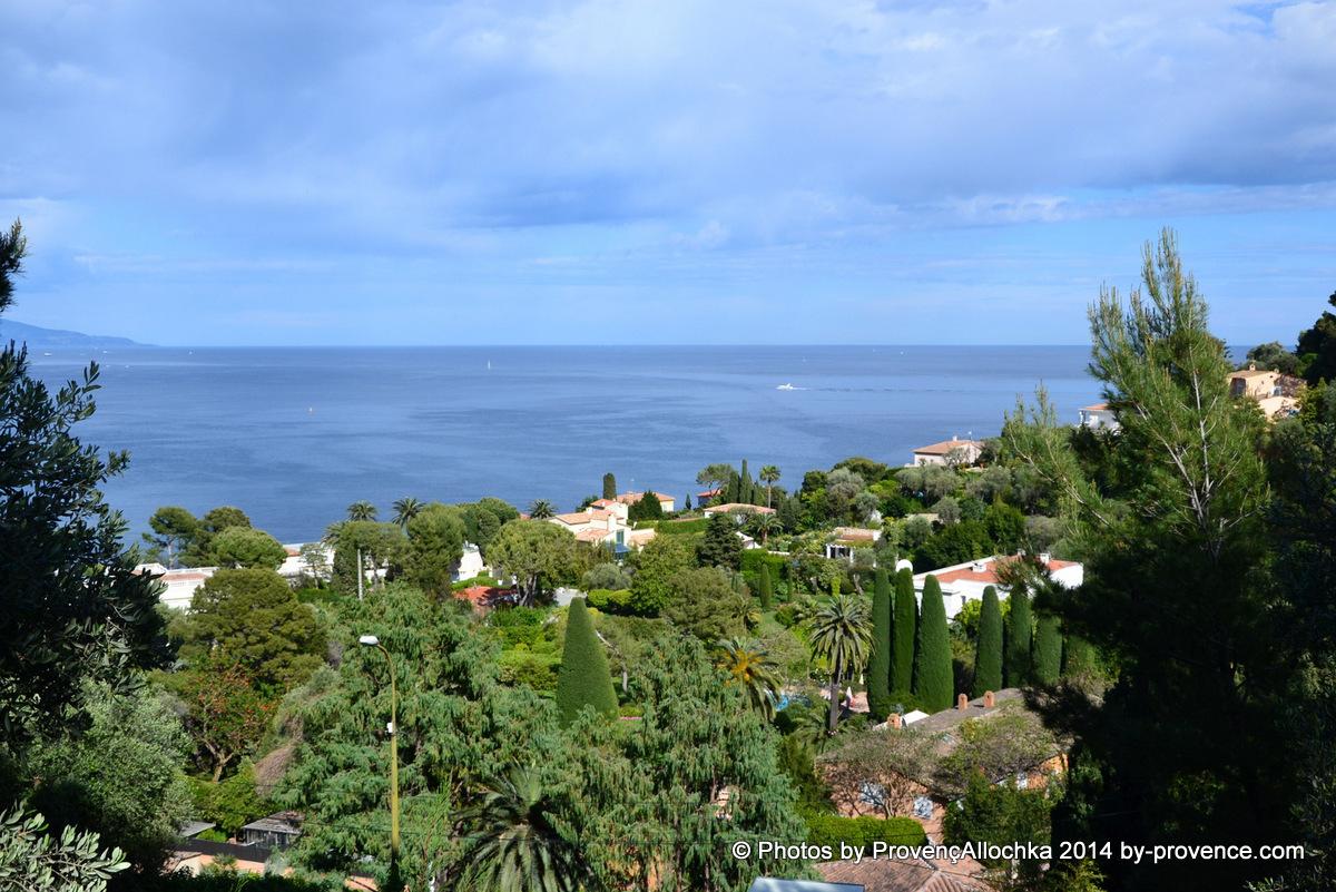 mer,palmier,villa