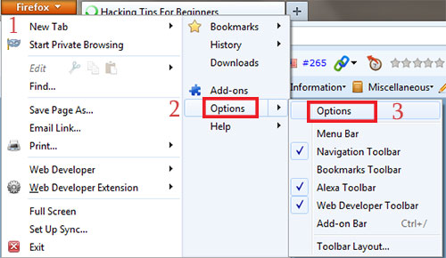 How To Hack Saved Password In Firefox ? InternetTricks