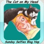 Sunday Cat Photo Hop for the cat lover in you!