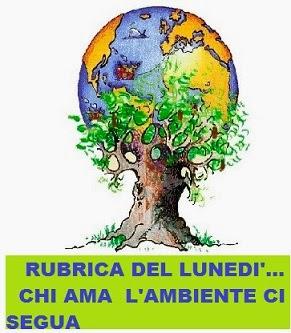 http://letturesenzatempo.blogspot.it/2013/10/rubrica-verde-del-lunedi-lambiente.html