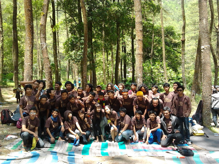 etnomusikologi 2011