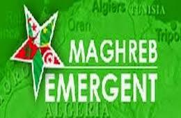 Le politologue Riadh Sidaoui : L'Algérie aide le général Haftar dans l'intérêt de la stabilité en L
