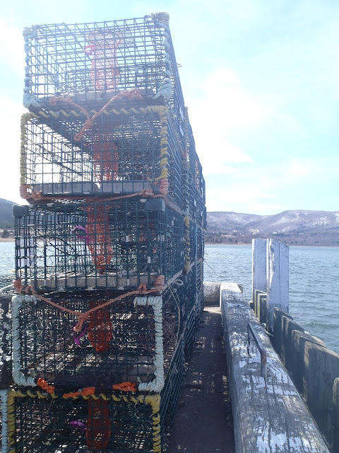 oshan whale watch, lobster trap, cape breton, nova scotia, cabot trail, canada, northern cape breton