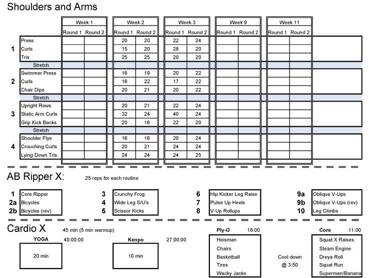 Addition P90x Back And Biceps Workout Sheet In Addition P90x Workout ...