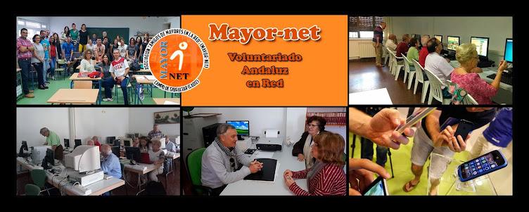 Mayor-Net
