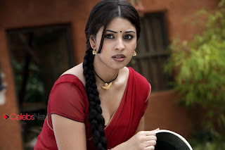 Richa Gangopadhyay Latest Pictures in Indian Half Saree ~ Celebs Next