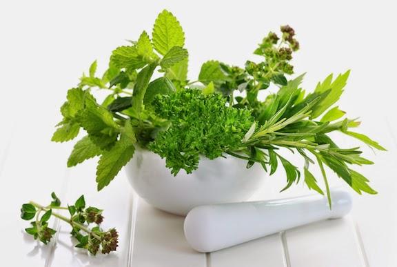 Image Obat Kutil di Kemaluan Herbal Alami