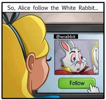 alice follow wrabbit on twitter