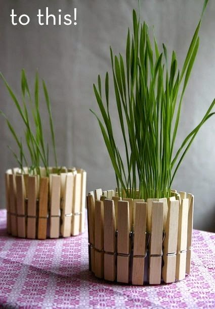 quin dice que las pinzas solo sirven para tender ropa pues no hay un montn de usos para pinzas de madera uno de ellos es el de cubrir la base de