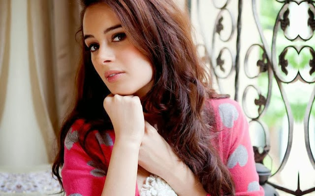 Evelyn+Sharma+Hd+Wallpapers+Free+Download028