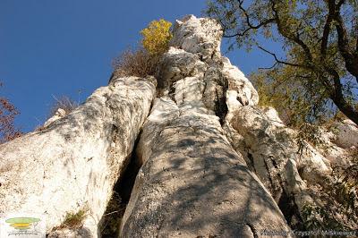 geoturystyka wapienie pod opactwem benedyktyńskim w Tyńcu