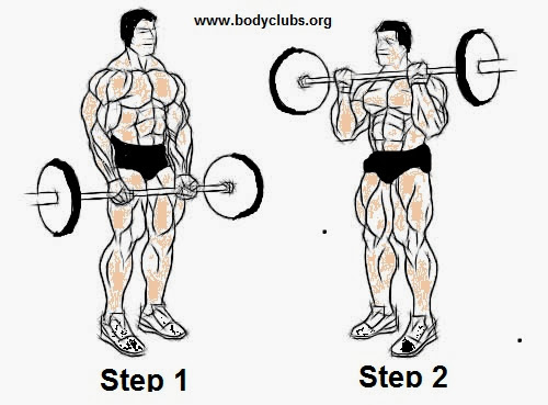 MODERN EVENTS JOB: Biceps Standing Barbell curl