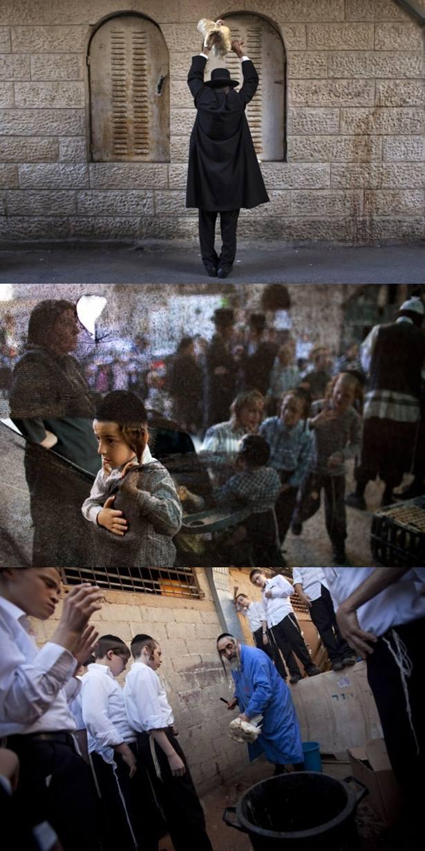 Sambutan Hari Yom Kippur Agama Yahudi (12 Gambar)