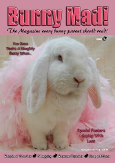 Bunny Mad Magazine