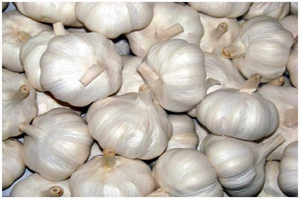Ayurvedic Tips to use Garlic at home for various Treatments