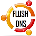 How To Flush (Clear) DNS Cache Under Ubuntu 12.04/11.10