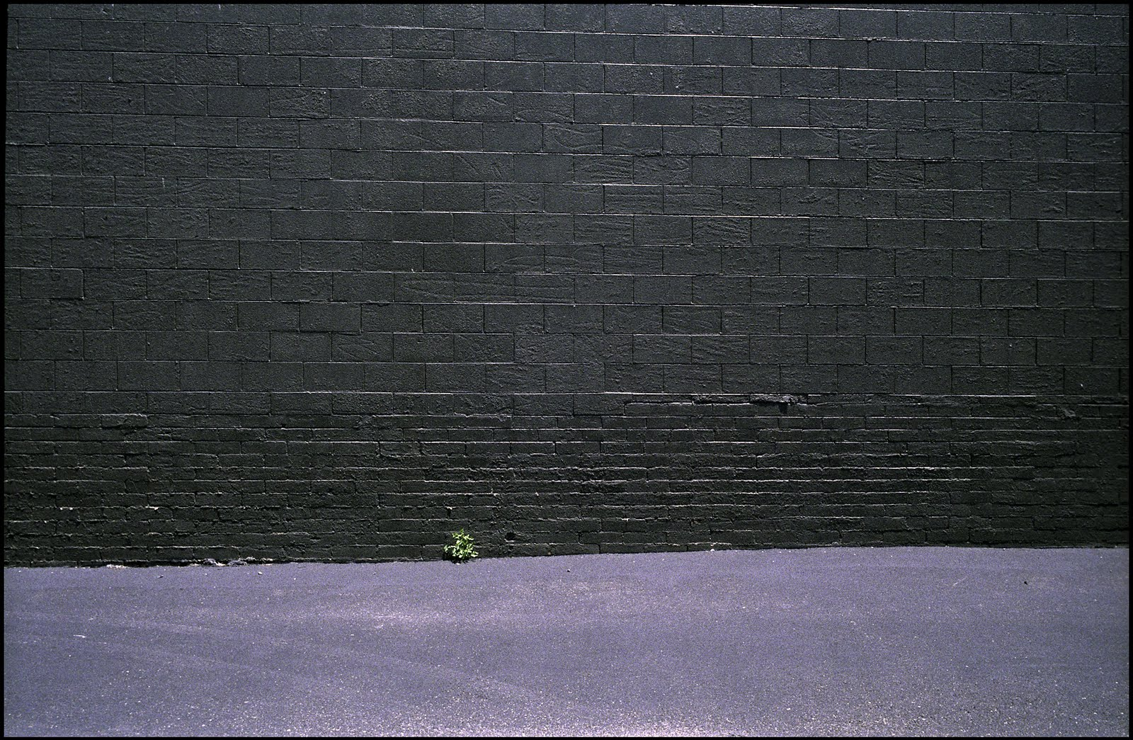 Walter Beckham 39 S Photo Blog Black Wall
