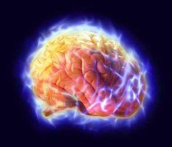 امور تدمر الدماغ تعرفوا اليها وتجنبوها -فور يو