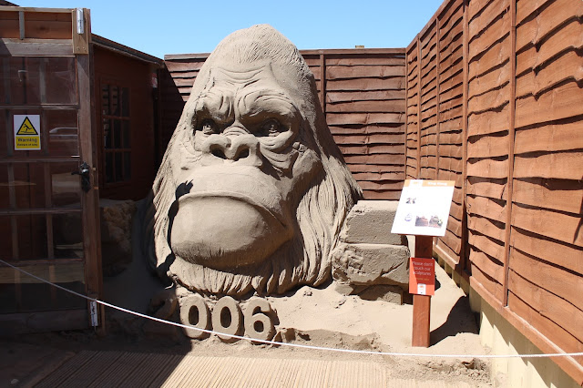 gorilla sand sculpture at weston sand festival 2015