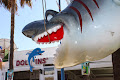 Have Lots of Fun at Dolfin's Luna Park in Ayia Napa