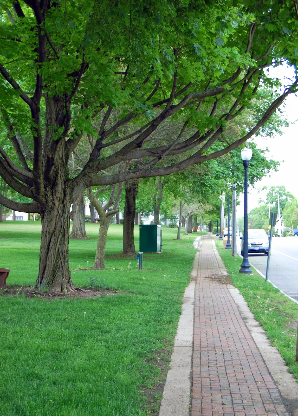 Union St sidewalk lined with trees