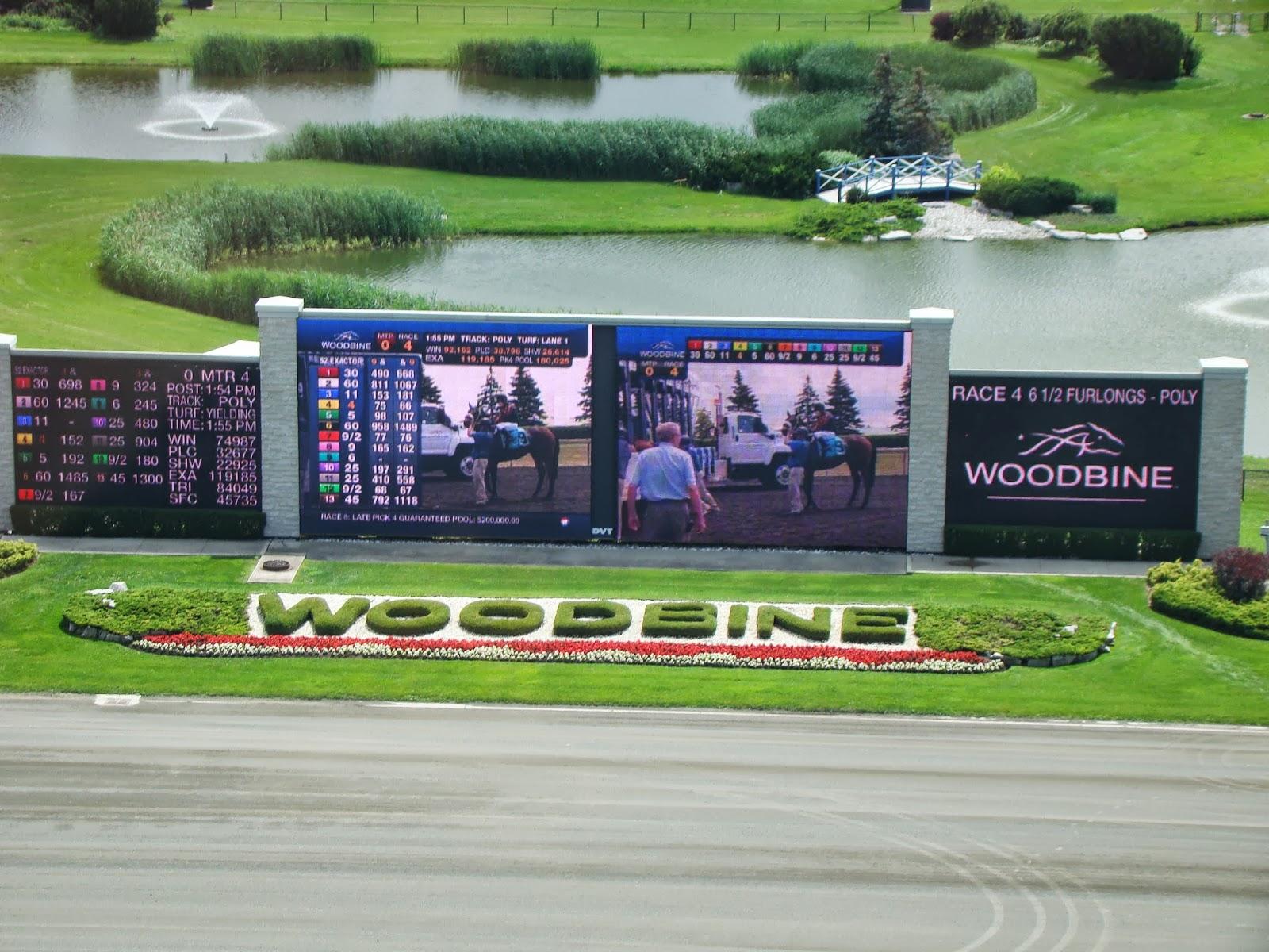 Woodbine racetrack wedding