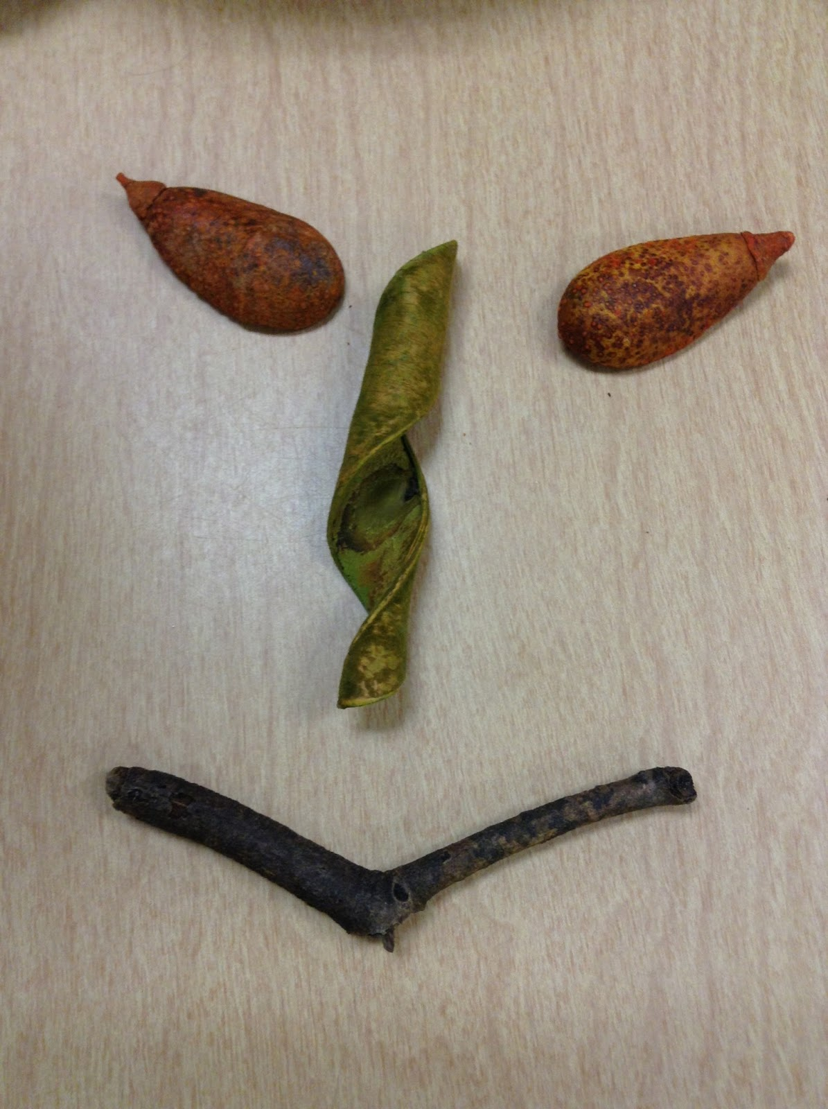 Face made using a stick and three seeds.