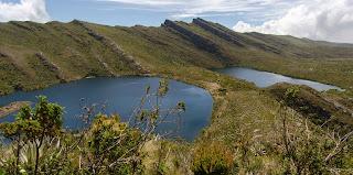Las lagunas de Siecha: lugar perfecto para conocer el páramo y el PNN de Chingaza