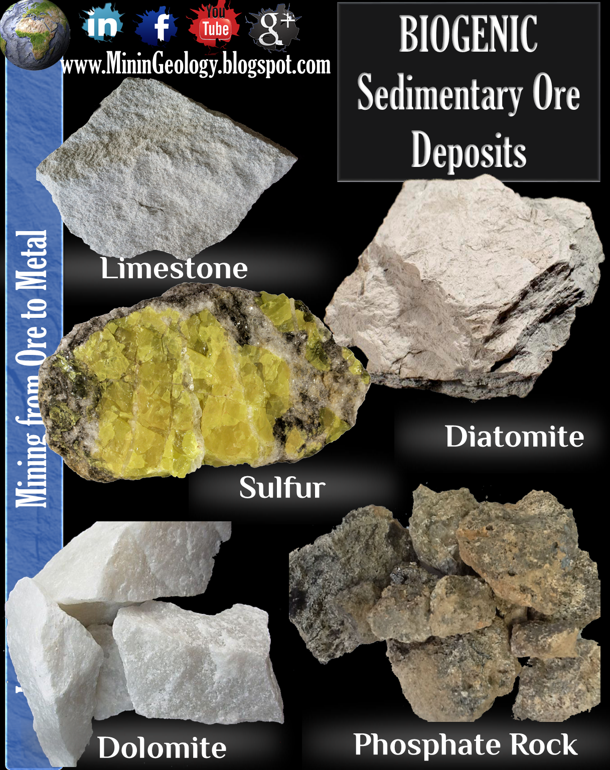 Biogenic Sedimentary Ore Deposits