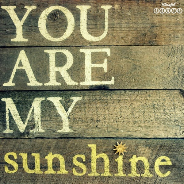 Wood Plank Sign : DIY Wood Plank Sign {You Are My Sunshine} @ Blissful Roots