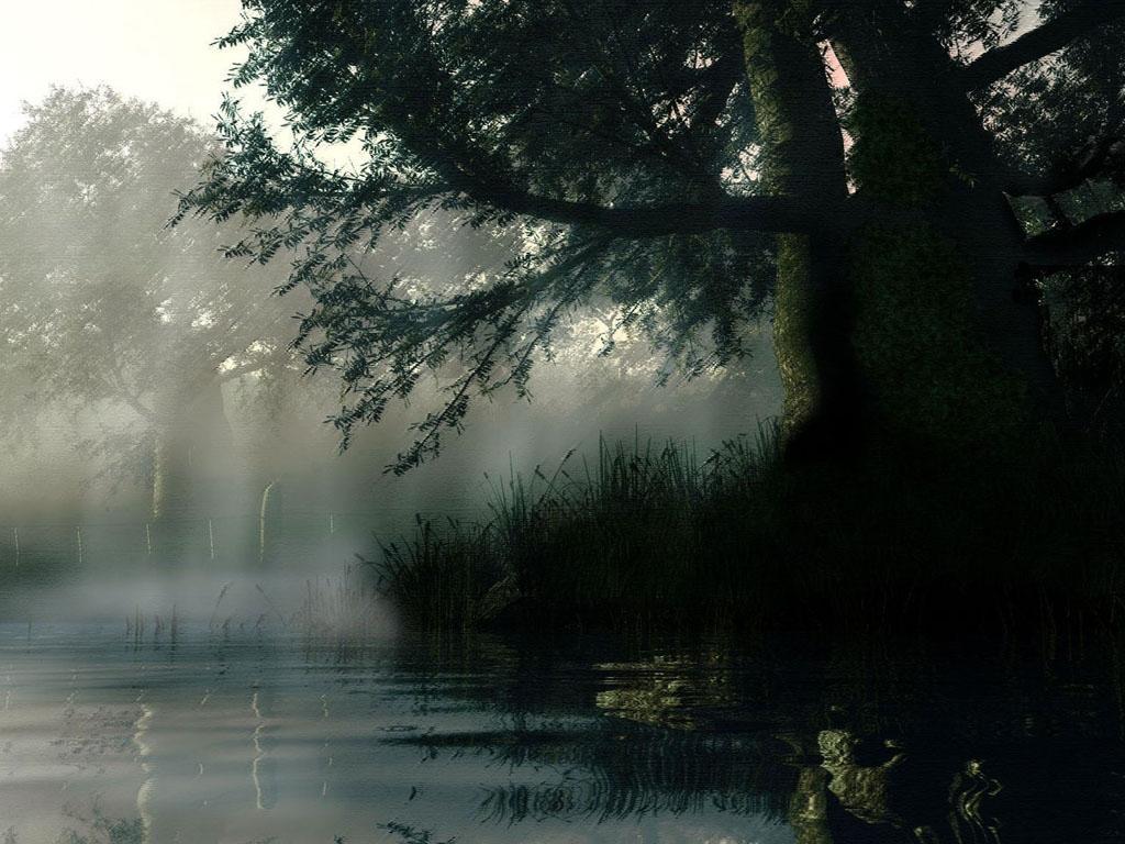 http://1.bp.blogspot.com/-H6j7ErMsRkc/USYq-Zw8oDI/AAAAAAAAAMo/ZzcP3v_-qks/s1600/rain+wallpaper+download+f.jpg