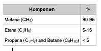 Komponen Gas Alam