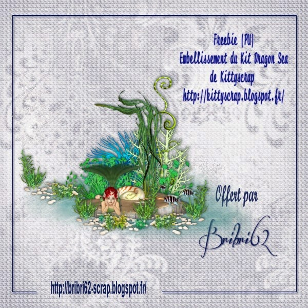 """ Dragon Sea "" Kittyscrap + kdossssssss !  PV+Embellissement++Kit+Dragon+Sea"