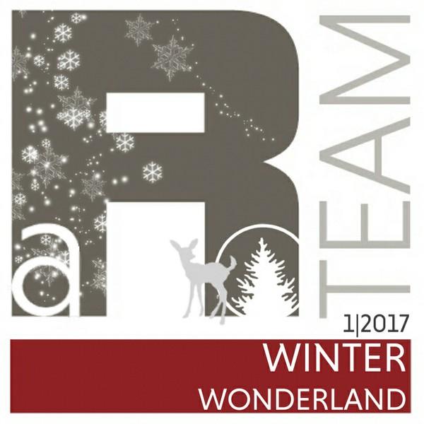 WINTER WONDERLAND - 01/2017