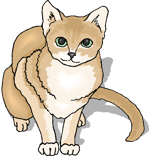Brown and White Cute Cat Free Animal Clipart