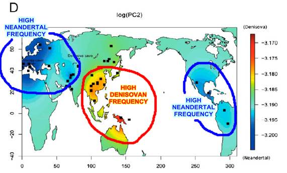 archaic ancestry
