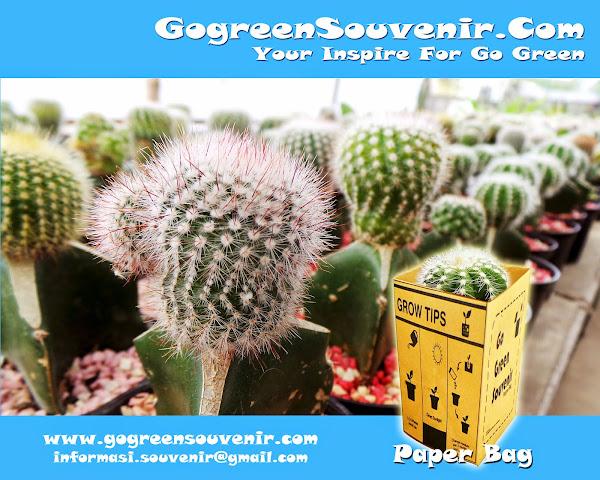 http://www.gogreensouvenir.com/p/paper-bag-silver-kaktus.html