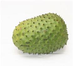 Jenis buah sirsak biasa