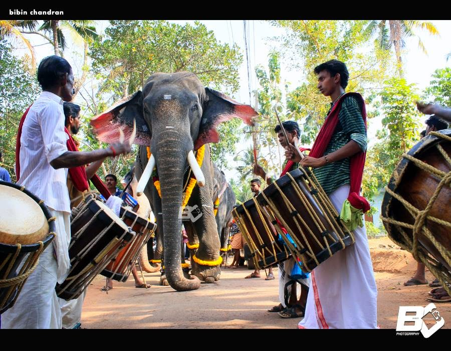 Shivaraju And 1st Mahout Parala Manoj