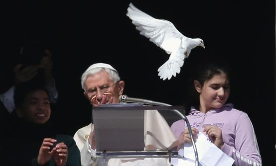 http://1.bp.blogspot.com/-H8EO23ePT7I/UQg3emCmukI/AAAAAAAAQGc/vX17WNr3tBg/s640/A-seagull-swooped-in-and-attacked-the-dove-released-by-Pope-Benedict-XVI-from-a-balcony-at-the-Vatican-on-Holocaust-Day.jpg