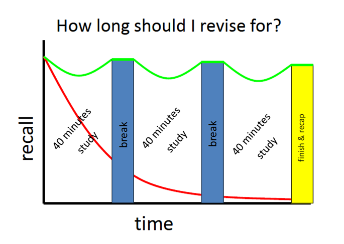 Www Gcsere Vision How To Revise