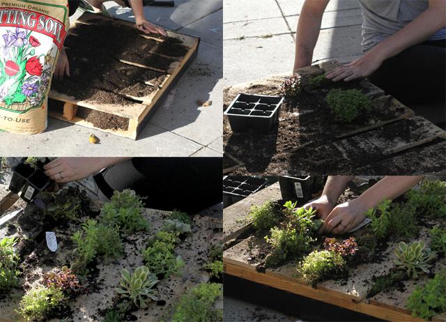 jardim vertical ideias:Jardim vertical de palete de madeira reciclado [fotos] – Ideias Green