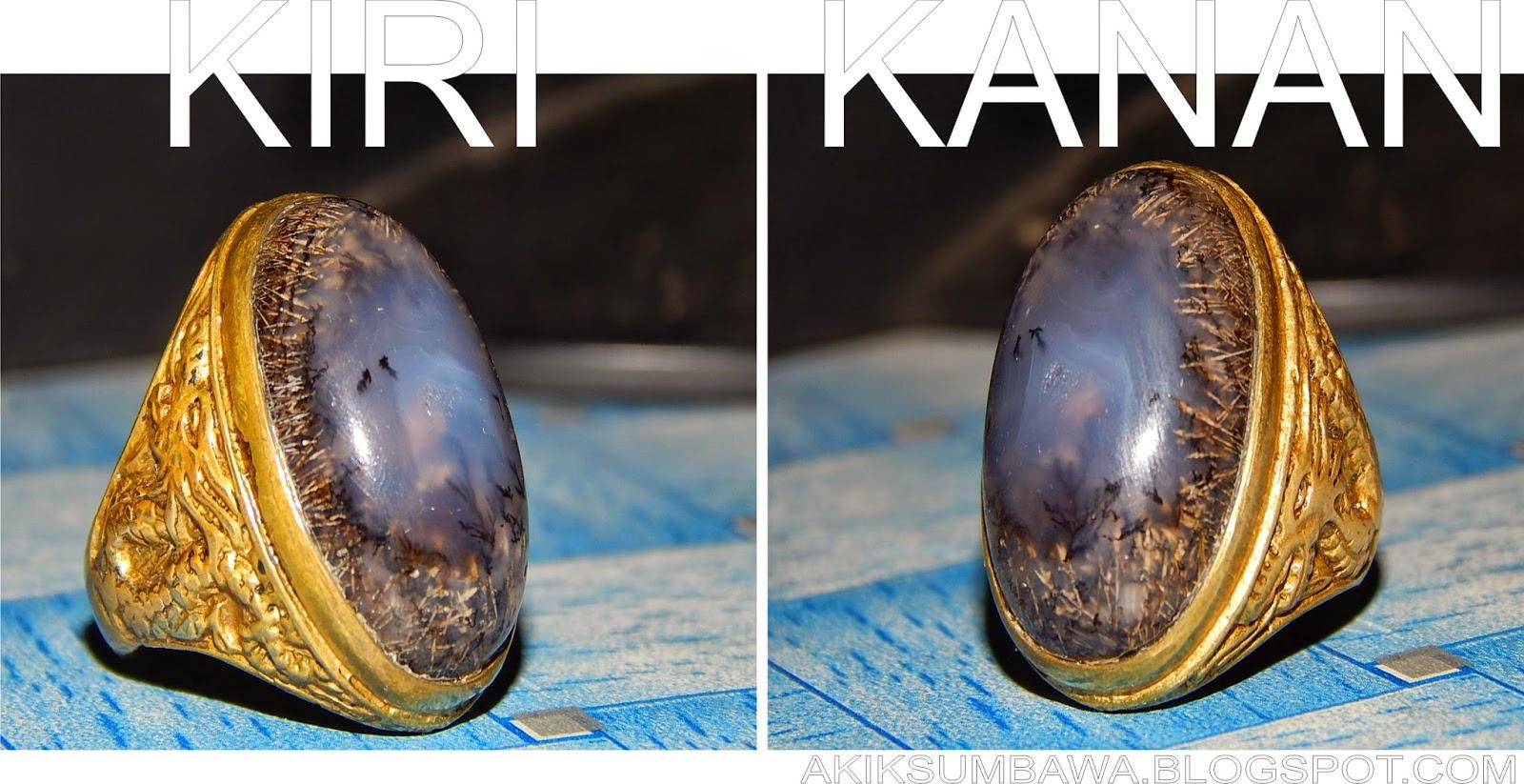 Dendrite Opal Dari Sumbawa